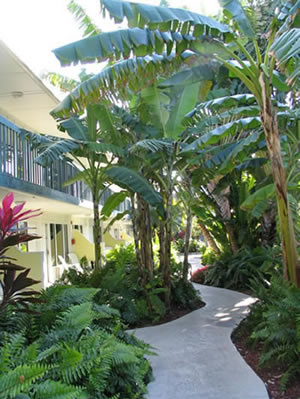 Florida Keys accomodations