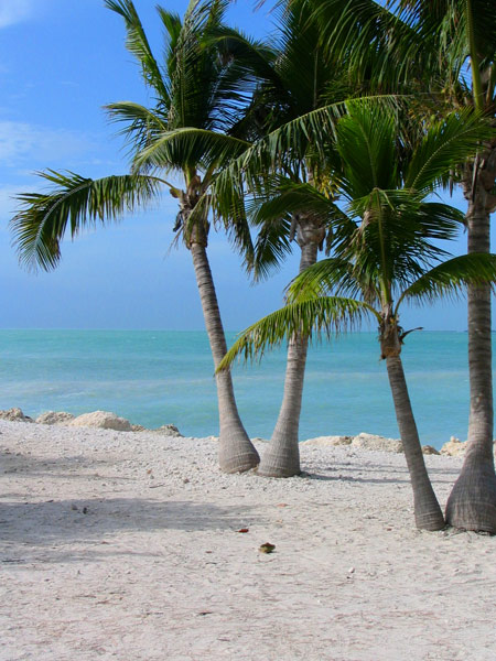 Fort Zachary Beach