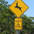 Key_Deer_Sign